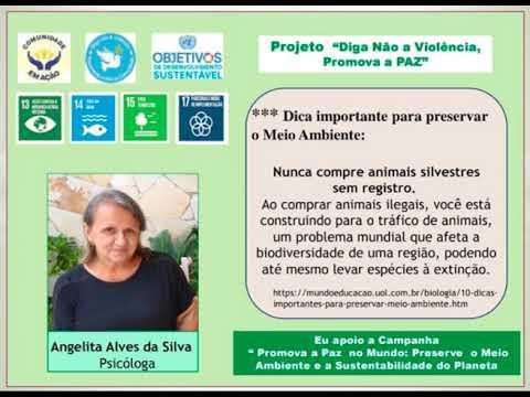 """Dicas para preservar o Meio Ambiente - Campanha """"Promova a Paz Ambiental e a Sustentabilidade do Planeta"""